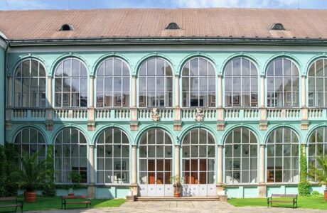 Zamek Dacice